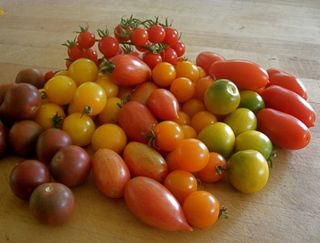 J & L heirloom cherry tomato collection special ...