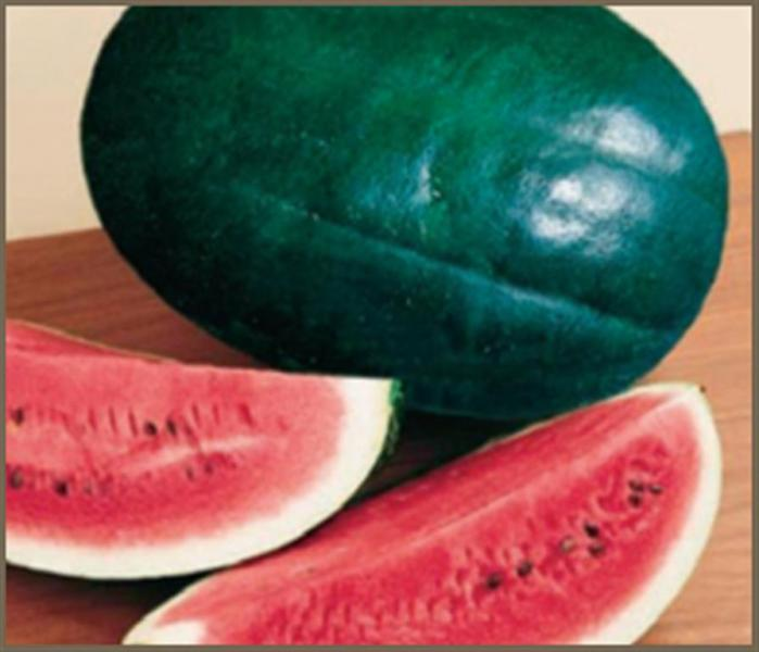 Black Diamond Sweet Watermelon 10 seeds