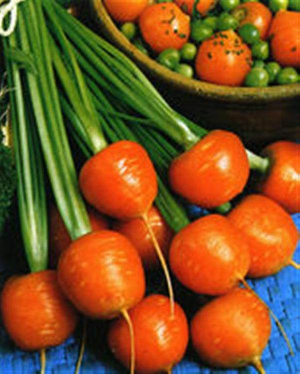 Heirloom carrot SMALL ROUND PARIS MARKET 1gm seeds