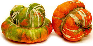 Turks Turban winter squash 10 seeds
