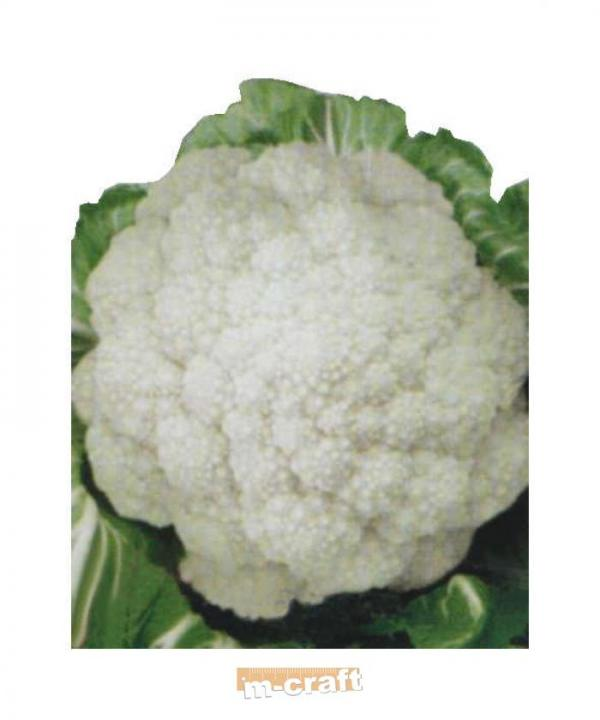 Heirloom Cauliflower DI JESI 100 seeds