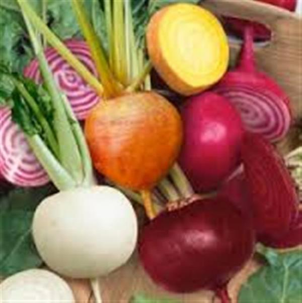 J & L Heirloom mixed beetroot collection 2gm seeds